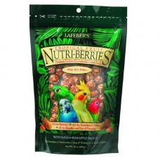 Nutri-berries Parakeet, Cockatiel, Lovebird and Conure Food